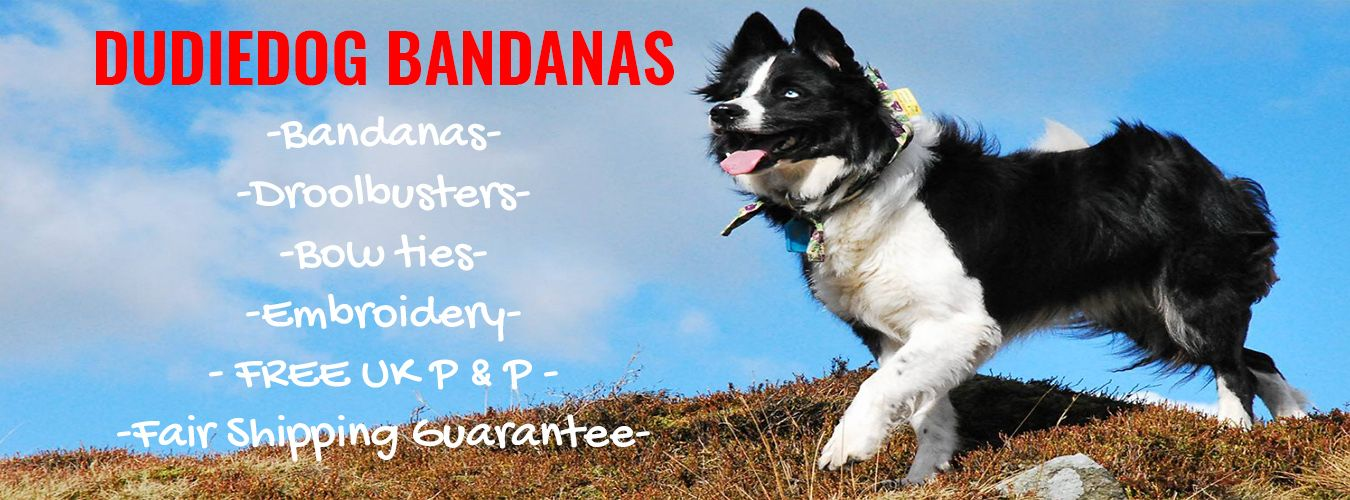 Shop banner for Dudiedog Bandanas. Buy beautiful handmade dog bandanas, bow ties and dog bibs UK. Free Shipping