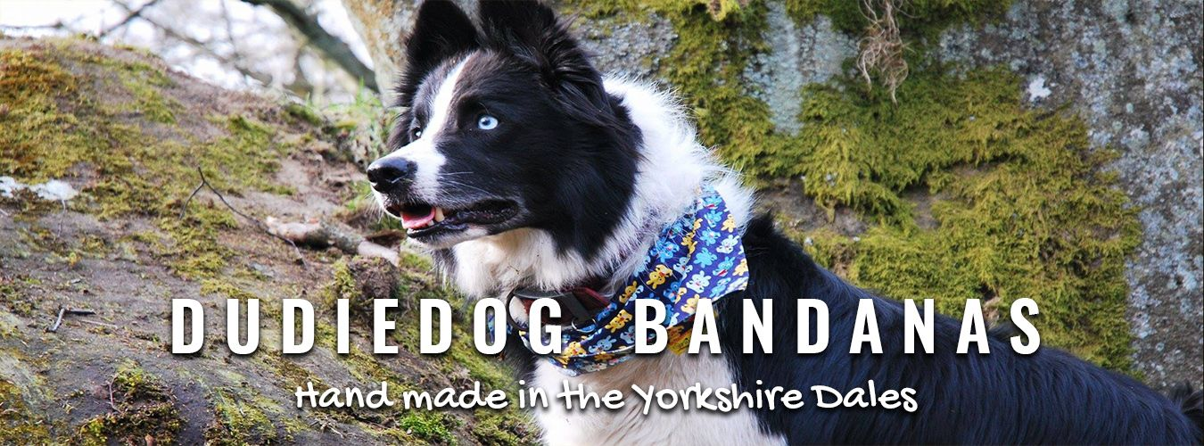 Shop Banner for Dudiedog Bandanas UK - the worlds best dog bandanas for happy active dogs