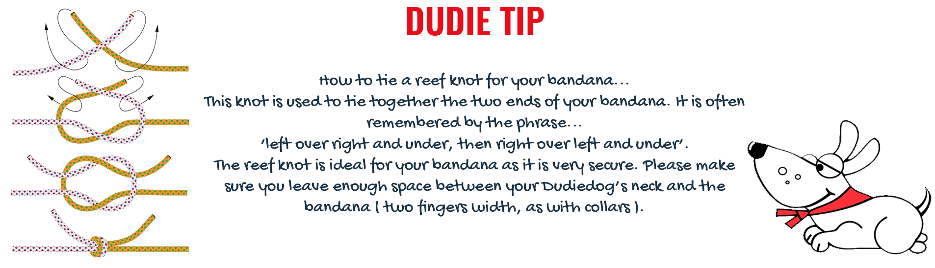 To make sure that your Dudiedog Bandana is secure we show you here how to tie a reef knot