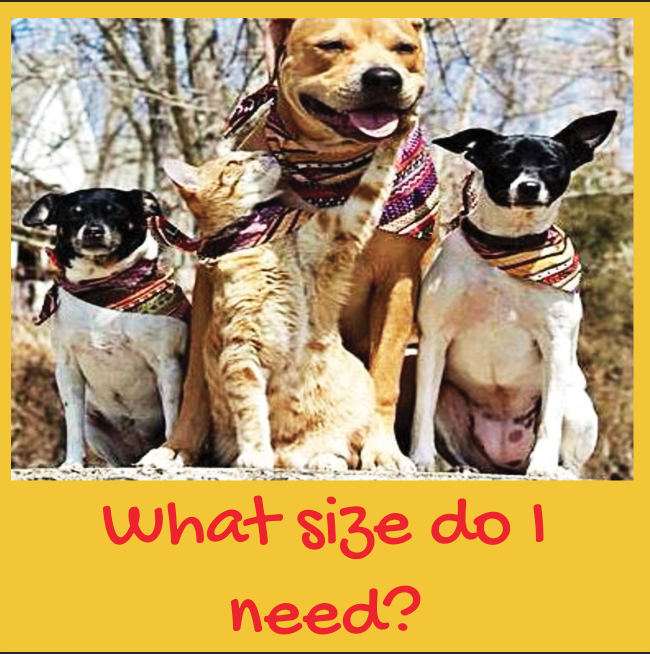 We make Dudiedog Bandanas in 7 sizes, so find which size of dog bandana you need here!