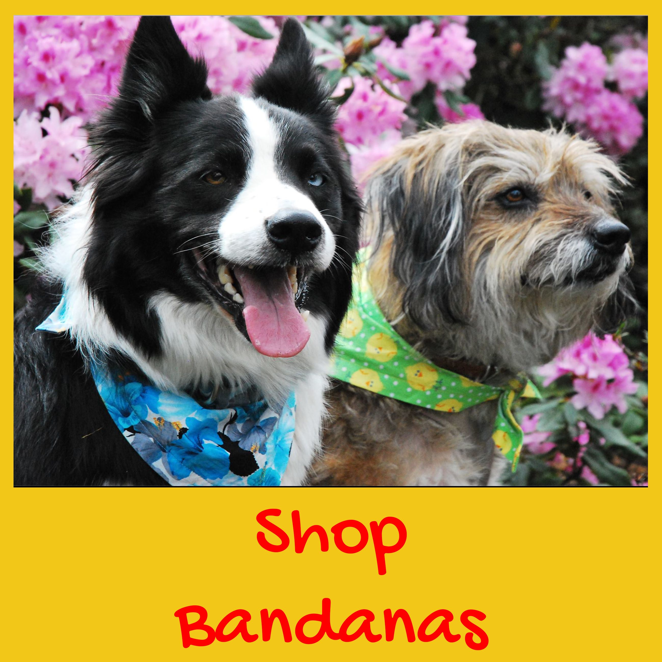 Find the best bandanas for dogs at Dudiedog Bandanas! Handmade in the UK, Free UK p&p